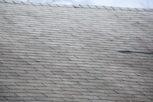 Roof Care Tips