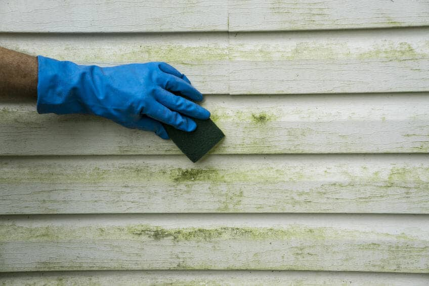 clean green siding