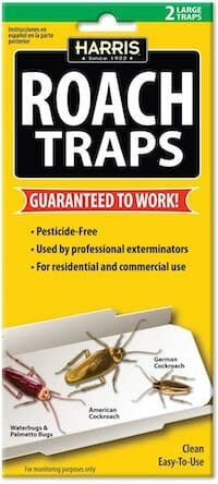 trap for roaches